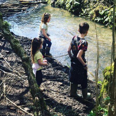 Woodland walks from English Cottage Vacation